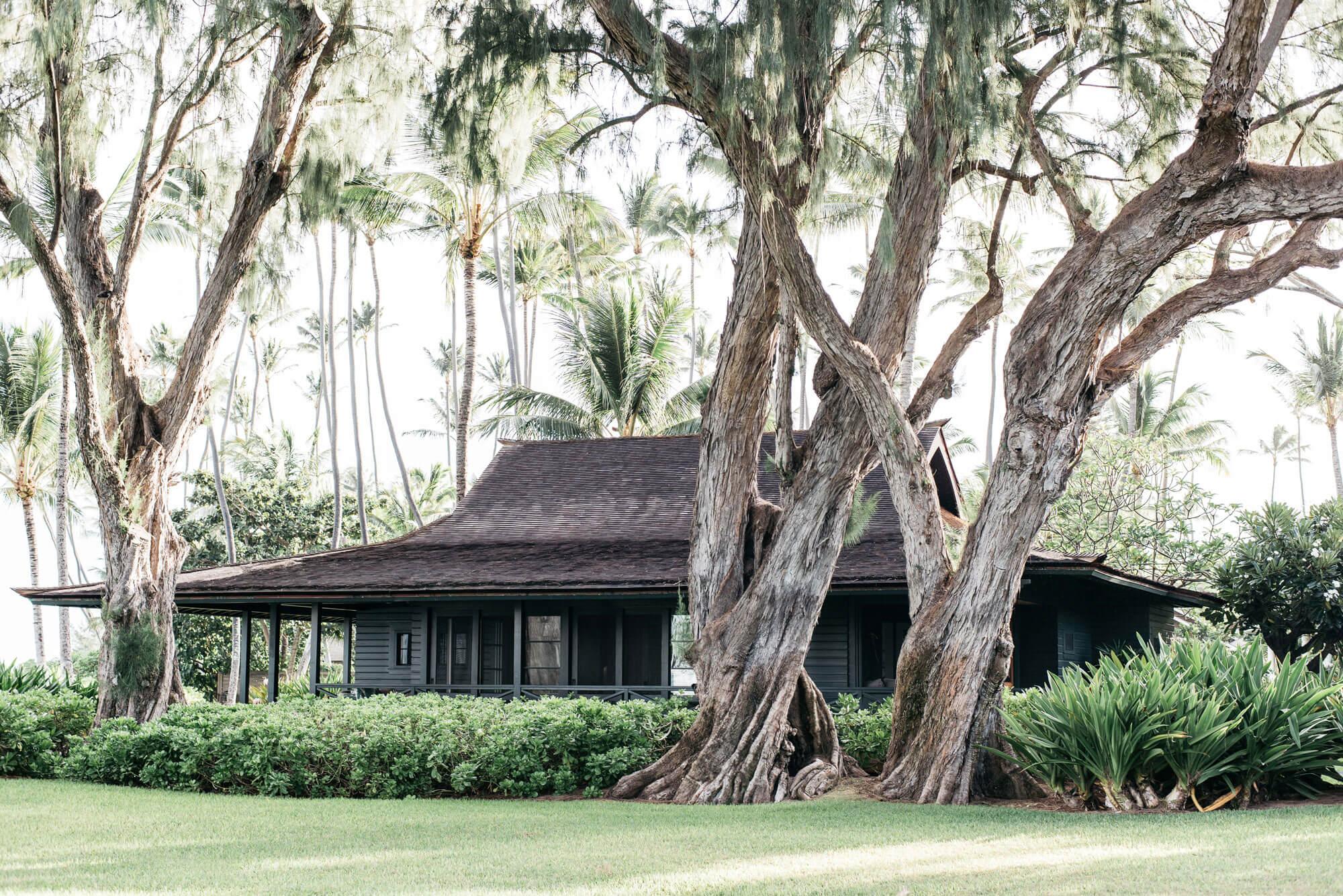maui beach cottage george hensler rh georgehensler com maui beach homes for rent maui beach homes vacation rental